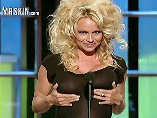 Famous all over hammer away globe busty blonde sexpot Pamela Anderson
